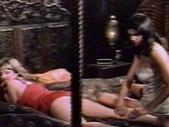 Erotic Interludes (1981) FULL VINTAGE MOVIE